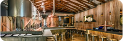 Half Day Craft Beer and Wine Tour